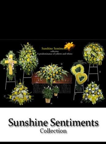 Fallon's Sunshine Sentiments Collection in Raleigh NC, Fallon's Flowers