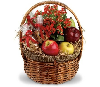 Health Nut Basket in Norristown PA, Plaza Flowers