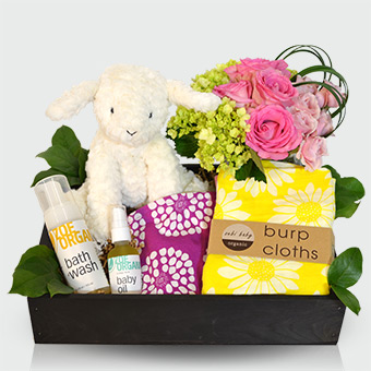 Bundle of Joy - Baby Girl Gift Basket in Dallas TX, Dr Delphinium Designs & Events