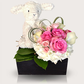 It's a Girl - Baby Girl Gift Basket in Dallas TX, Dr Delphinium Designs & Events