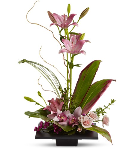 Imagination Blooms with Cymbidium Orchids in Fort Worth TX, TCU Florist