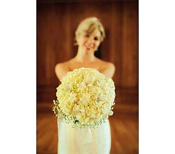 Rustic Chic in Asheville NC, Kaylynne's Briar Patch Florist, LLC