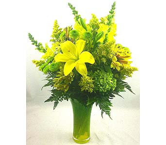 Lilies and Lime in Raleigh NC, North Raleigh Florist