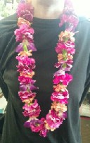 Miniature Carnation Lei in Anchorage AK, A Special Touch