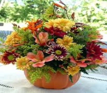 Autumn Pumpkin in Fond Du Lac WI, Haentze Floral Co
