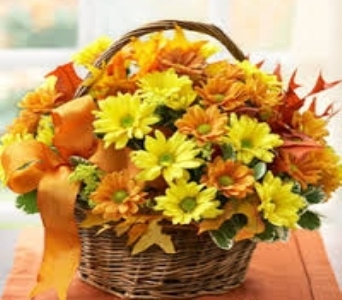 Fall Daisy Basket in Fond Du Lac WI, Haentze Floral Co