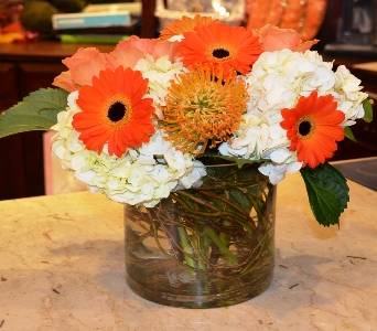 Princeton Perfect  in Princeton, Plainsboro, & Trenton NJ, Monday Morning Flower and Balloon Co.