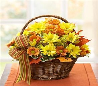 Fall Daisy Basket with Ribbon in Princeton, Plainsboro, & Trenton NJ, Monday Morning Flower and Balloon Co.