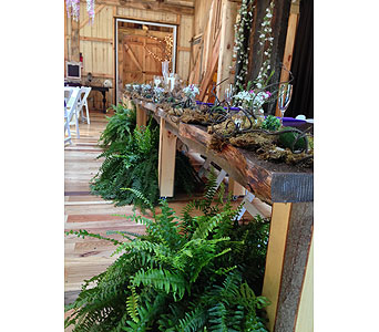 Fern in Loudonville OH, Four Seasons Flowers & Gifts