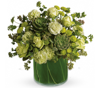 Natural Wonders with Succulents Bouquet in Santa Monica CA, Edelweiss Flower Boutique
