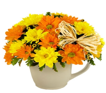 Daisy Mug in Princeton, Plainsboro, & Trenton NJ, Monday Morning Flower and Balloon Co.