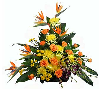 Tropical Paradise Birds of Paradise Rustic Basket in Chicagoland IL, Amling's Flowerland