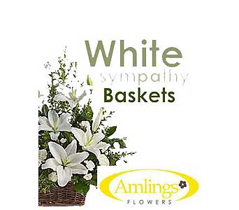 White Sympathy Basket in Chicagoland IL, Amling's Flowerland