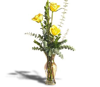 Roses of Appreciation in Jacksonville FL, Hagan Florists & Gifts