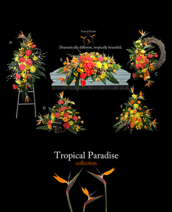 Lehrer''s Tropical Paradise in Denver CO, Lehrer's Flowers