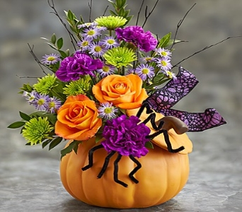 Halloween Treat with Spider in Princeton, Plainsboro, & Trenton NJ, Monday Morning Flower and Balloon Co.