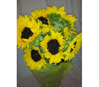 Sunflower French Wrap Bouquet in New Paltz NY, The Colonial Flower Shop