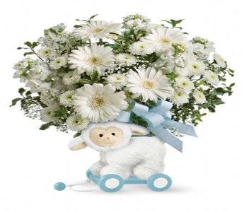 Sweet Little Lamb- Baby Blue in Perrysburg & Toledo OH  OH, Ken's Flower Shops