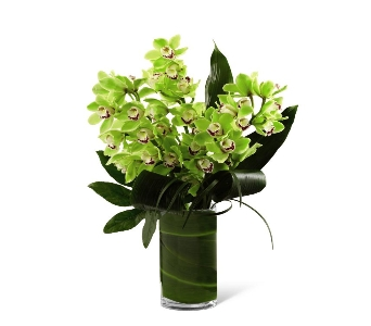 Vision Luxury Orchid Bouquet in Ogden UT, Lund Floral