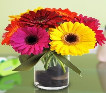 Happy Gerberas in Glendale AZ, Blooming Bouquets