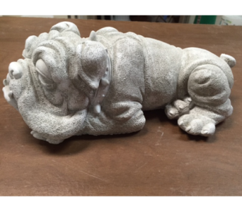 Bulldog in Brownsburg IN, Queen Anne's Lace Flowers & Gifts