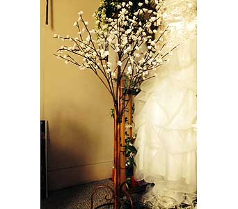 2 Lighted Cherry Blossom Tree in Loudonville OH, Four Seasons Flowers & Gifts