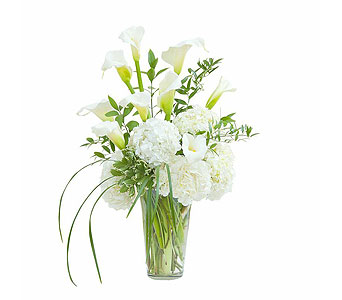 Devotion in Wellington FL, Wellington Florist