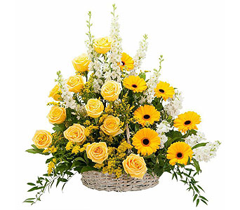 Ray of Sunshine Basket Tribute in Green Bay WI, Enchanted Florist