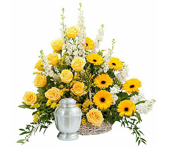 Rays of Sunshine Basket Surround in Casper WY, Keefe's Flowers