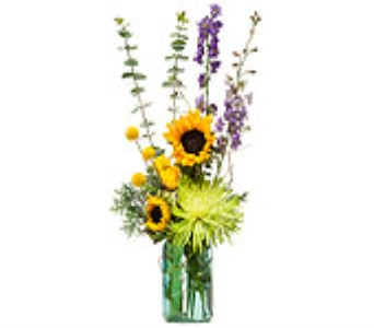 Sunflower n Blue in Exton PA, Malvern Flowers & Gifts