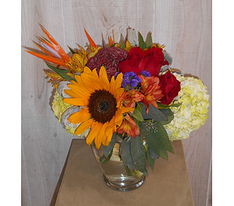 Escaping Bird in Dallas TX, Petals & Stems Florist