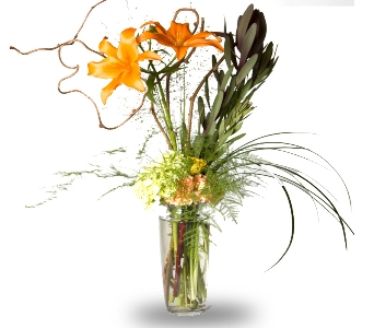 Contemporary Lilies in Oshkosh WI, House of Flowers