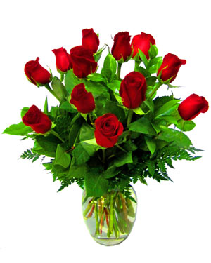 DZ Classic Red ''Freedom''  Roses in Wheaton IL, Expressions Flowers