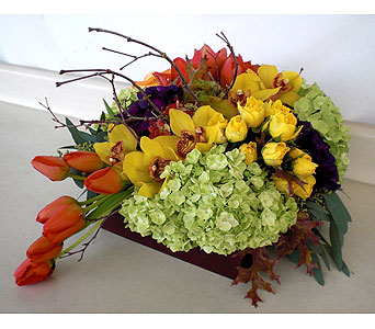 Autumn Delight in Los Angeles CA, Dave's Flowers
