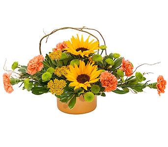 Harvest in Harrisonburg VA, Blakemore's Flowers, LLC