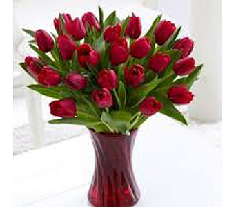 Vase of 20 Red Tulips in San Antonio TX, Allen's Flowers & Gifts