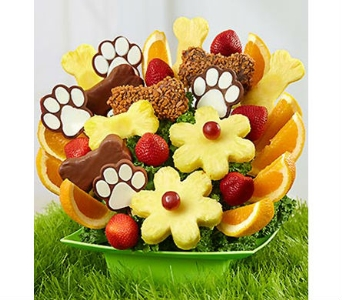 Bow Wow Bouquet in Mount Morris MI, June's Floral Company & Fruit Bouquets