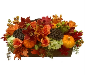 Bountiful Fall Flower Box in Santa Monica CA, Edelweiss Flower Boutique