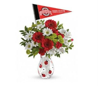 OSU Ladybug Bouquet in Columbus OH, OSUFLOWERS .COM