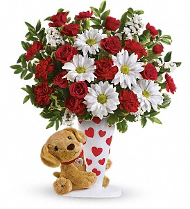 Send a Hug I Ruff You by Teleflora in Vienna VA, Caffi's Florist