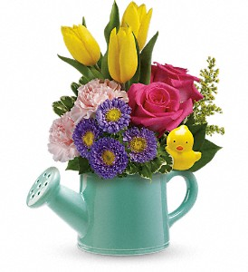 Teleflora's Send a Hug Sunny Spring Bouquet in Wake Forest NC, Wake Forest Florist