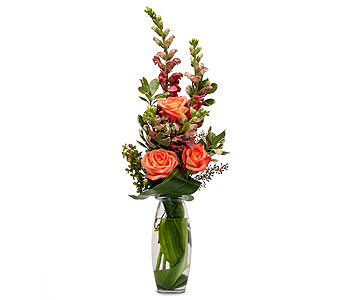 Trio of Orange in Augusta GA, Ladybug's Flowers & Gifts Inc