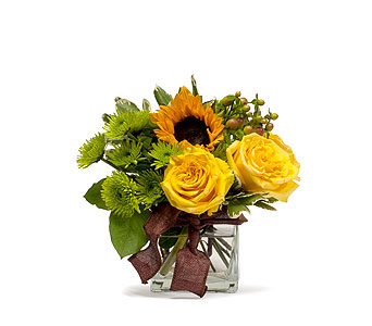 Golden Woodland in Charlottesville VA, A New Leaf Florist