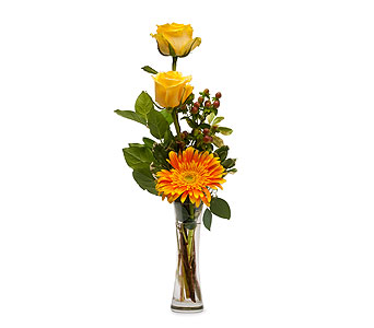 Bring Me Sunshine in South Hadley MA, Carey's Flowers, Inc.