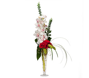 Sheer Splendor in Vinton VA, Creative Occasions Florals & Fine Gifts