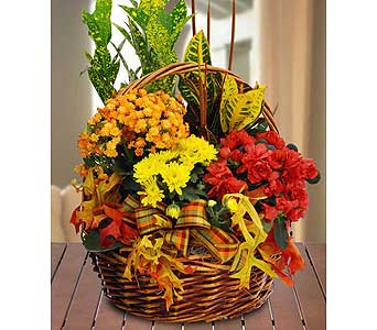 Fall Blooming Garden Basket by Hoogasian Flowers in San Francisco CA, Hoogasian Flowers