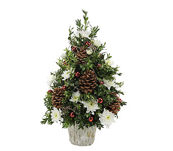 Traditional Boxwood in Fernandina Beach FL, Artistic Florist