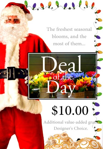 Holiday Deal of the Day in Elmhurst IL, Pfund & Clint Florist