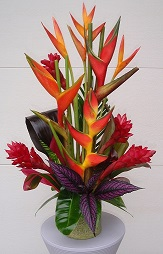BURST OF THE TROPICS BOUQUET in Vienna VA, Vienna Florist & Gifts