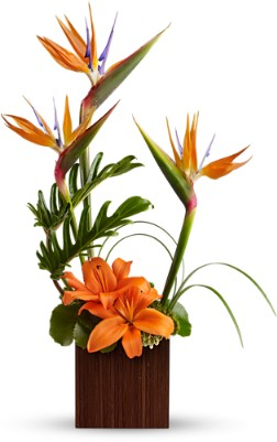 BIRD OF PARADISE BOUQUET in Vienna VA, Vienna Florist & Gifts